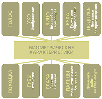 биометрические признаки